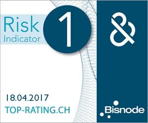 D&B Rating Certificate